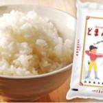 山形でしか作れない幻のお米!平成26年産 どまんなか 無洗米 5kg×2袋 が激安