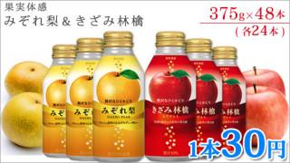 『果実体感みぞれ梨』『果実体感きざみ林檎』375gボトル缶×48本(各24本)で1,440円 送料込!